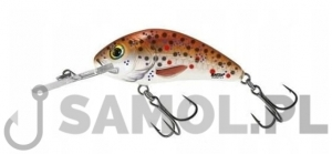 Wobler Salmo Rattlin Hornet 4,5cm Floating BHT