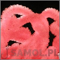 CHENILLE MAGNUM FLUO PINK